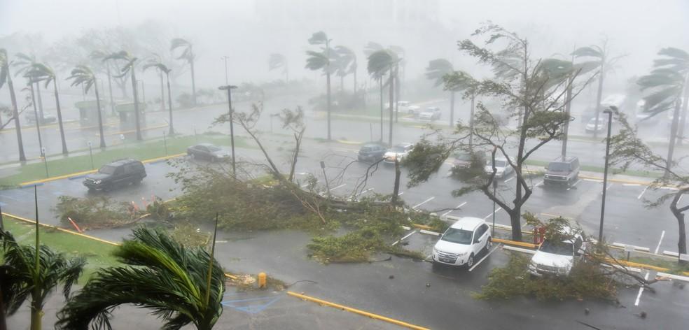 000 sl5k6 jgFGUhE - Porto Rico pede ajuda urgente dos EUA após furacão Maria