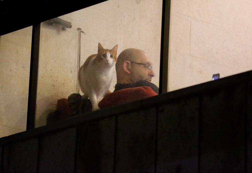 Um homem mexe no celular enquanto seu gato olha pela janela de uma sacada em Beirute, no Líbano, nesta terça-feira (31), durante isolamento para evitar a propagação do novo coronavírus — Foto: Hussein Malla/AP