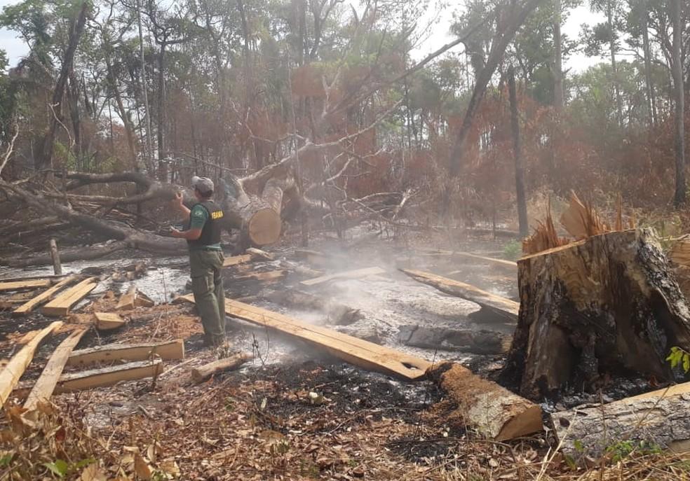 Fogo na Terra Indígena Arões em Mato Grosso — Foto: Ibama