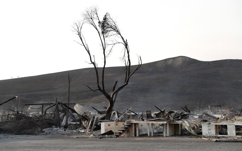 Ruínas da centenária loja de laticínios Stornetta Dairy, na rodovia 121, em Sonoma, Califórnia, em foto de 9 de outubro (Foto: Reuters/Stephen Lam)