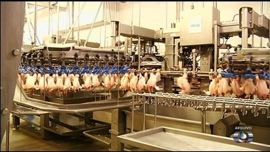 Funcionários da BRF de Rio Verde temem demissões após União Europeia proibir 20 frigoríficos de exportar frango para região