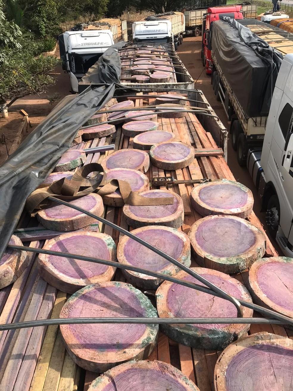 Mil metros cúbicos de madeira ilegal e 30 caminhões foram apreendidos em MT — Foto: Comando de Fronteira Miltar/MT
