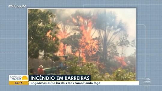 Incêndio atinge área de preservação de povoado no oeste da Bahia; suspeita é de crime ambiental