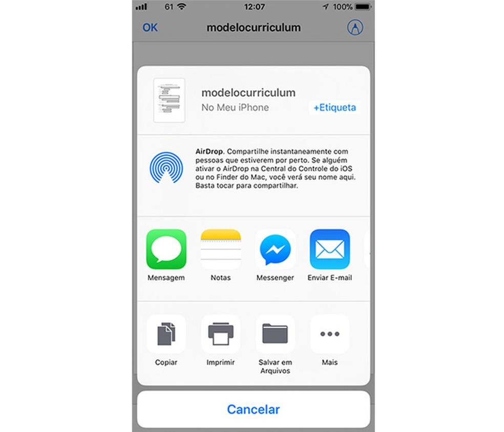 Opções de compartilhamento de um documento assinado com o app Arquivos do iPhone (Foto: Marvin Costa/TechTudo)