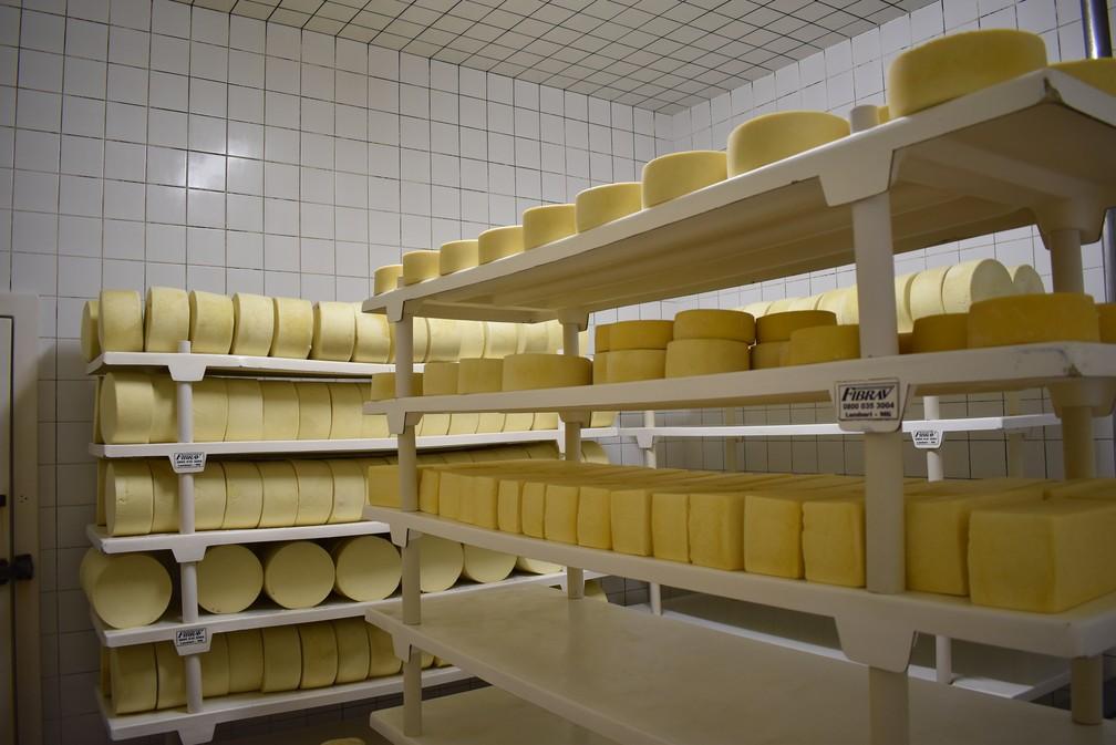 Laticínios misturam uso de máquinas com toque dos queijeiros em Cruzília (MG) — Foto: Fernanda Rodrigues/G1