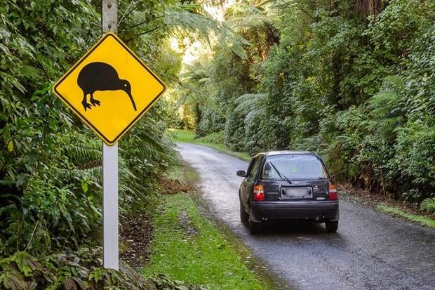 Nova Zelândia já quis trocar carros brasileiros por leite em pó (Foto: Divulgação/VW/Acervo MIA)