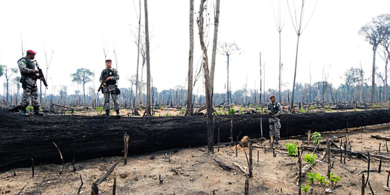 PARÁ Agentes da Força Nacional de Segurança flagram desmatamento ilegal dentro da Floresta Nacional de Jamanxim (Foto:  ANTONIO SCORZA/AFP)