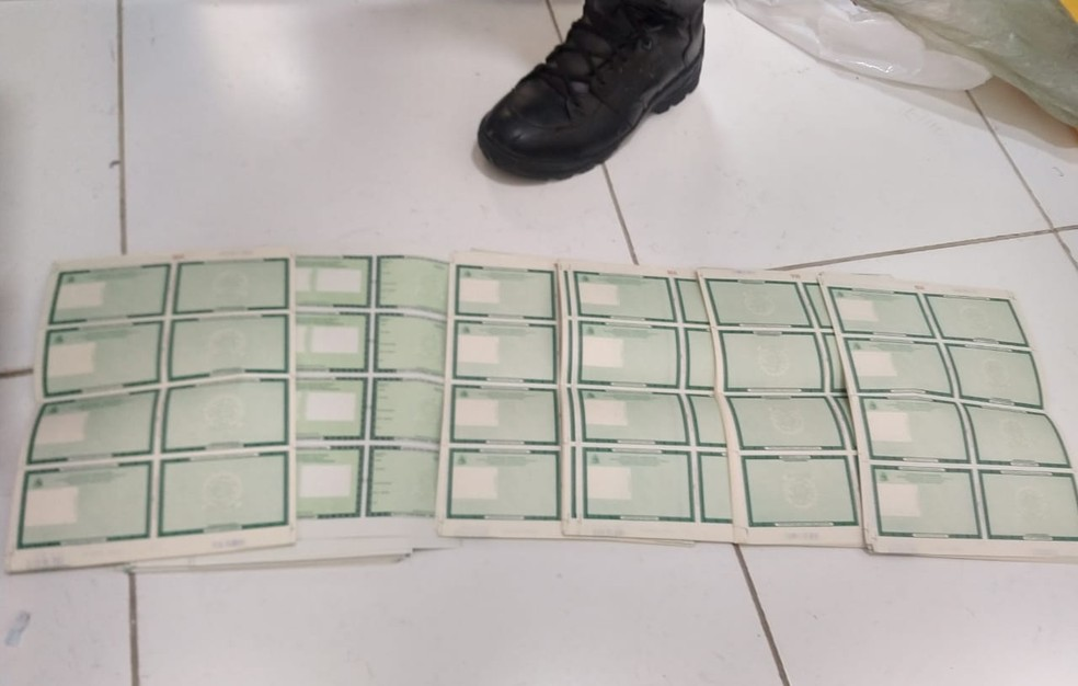 Policias federais apreenderam folhas de documentos em branco, usadas para criar documentos falsos — Foto: Divulgação/ Polícia Federal