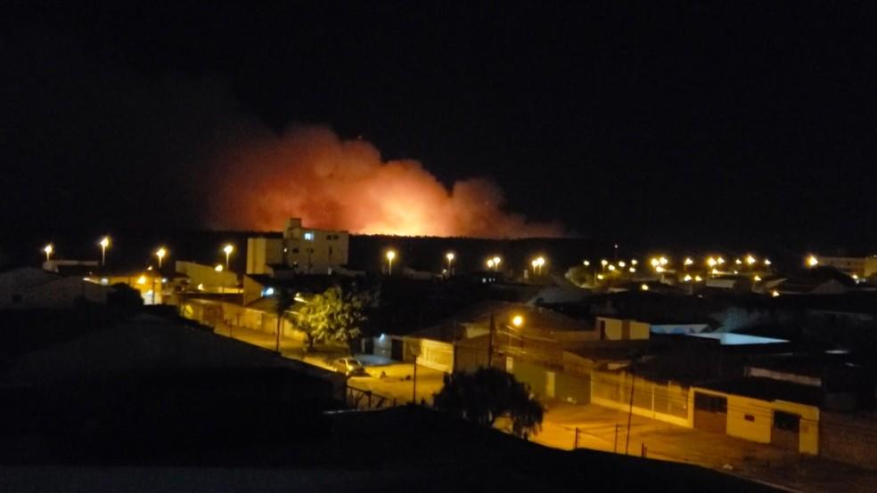Fogueira acesa por adolescentes causam incêndio na Floresta Nacional de Brasília — Foto: Arquivo pessoal