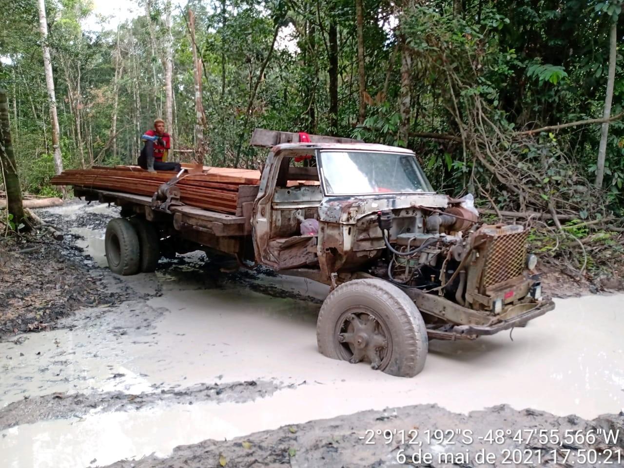 Operação apreende trator, caminhão com madeira ilegal e motosserra em área de mata invadida no Moju, PA