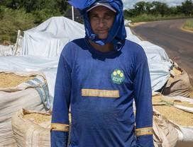soja-estrada-caminhos-da-safra (Foto: Fernando Martinho/Ed.Globo )