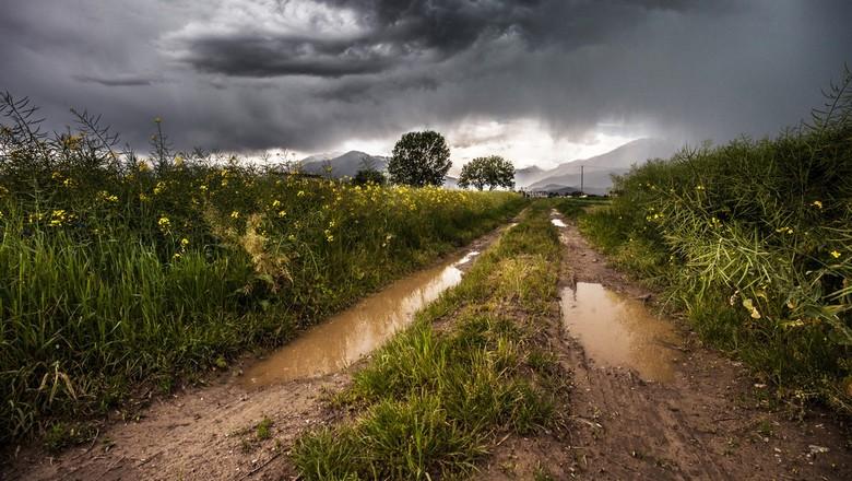 chuva-campo-meteorologia (Foto: CCommons/Pexels)