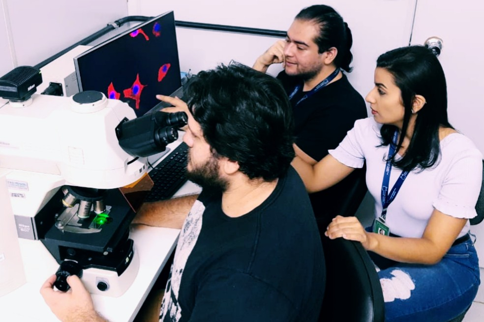 Grupo de pesquisadores do Laboratório de Imunologia Celular Aplicada à Saúde, da Fiocruz-RO, em um dos experimentos.  — Foto: Mauro Valentino Paloschi/Arquivo pessoal