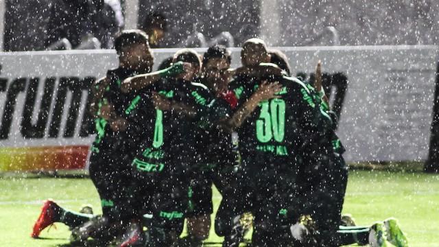 Palmeirenses comemoram gol contra o Bragantino