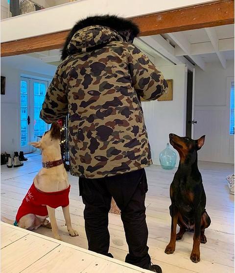 O rapper The Weeknd com seus dois cachorros (Foto: Instagram)
