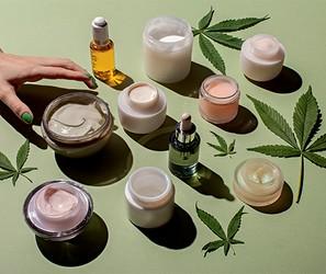 Canabidiol: o ingrediente da vez dos cosméticos