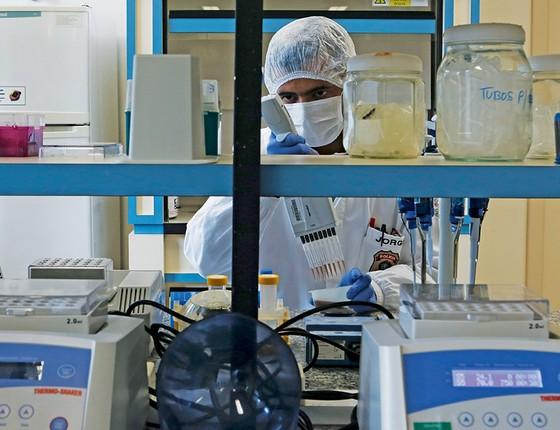 PISTA GENÉTICA Perito trabalha no laboratório da Polícia Federal, em Brasília. Tecnologia há. O que falta é material genético para comparação (Foto: Michel Filho/Agência O Globo)