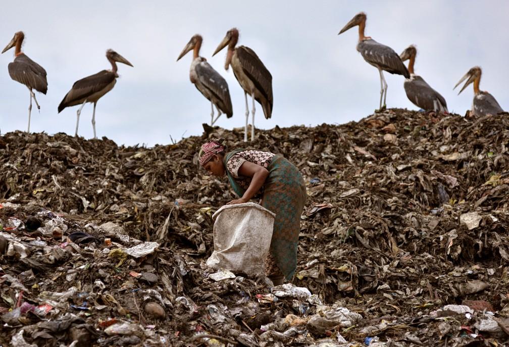 Uma catadora coleta itens recicláveis ao lado de um bando de pássaros em um lixão de Guwahati, na Índia.  (Foto: Anuwar Hazarika/Reuters)