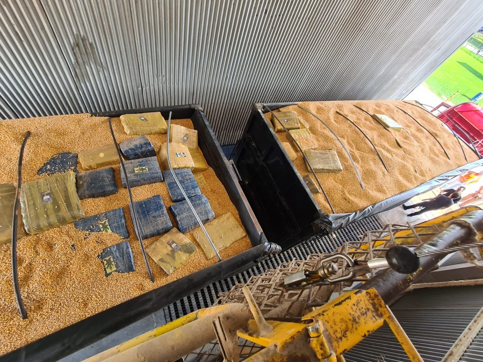 Droga estava escondida dentro de carga de milho — Foto: Polícia Federal/Reprodução