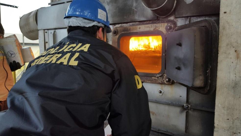 Essa é a segunda incineração realizada pela Polícia Federal no estado neste ano.  (Foto: Polícia Federal/Divulgação)