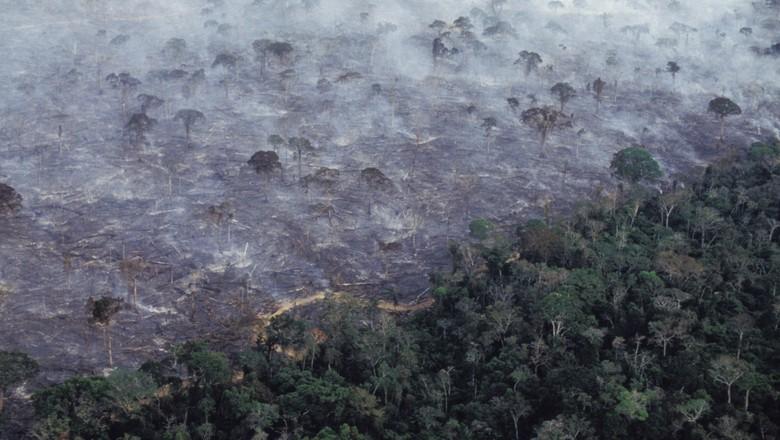 amazonia-fogo-incendio-floresta (Foto: Getty Images)
