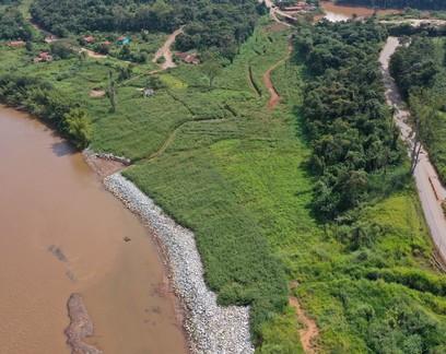 Após quase três anos, animais silvestres começam a voltar à região de Brumadinho