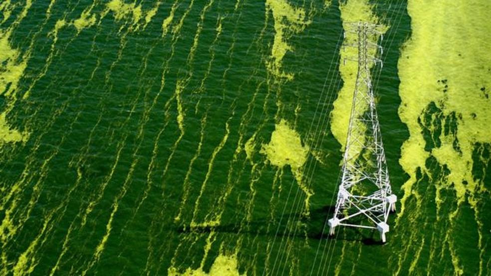 Cor verde reflete presença de algas. — Foto: Nasa via BBC