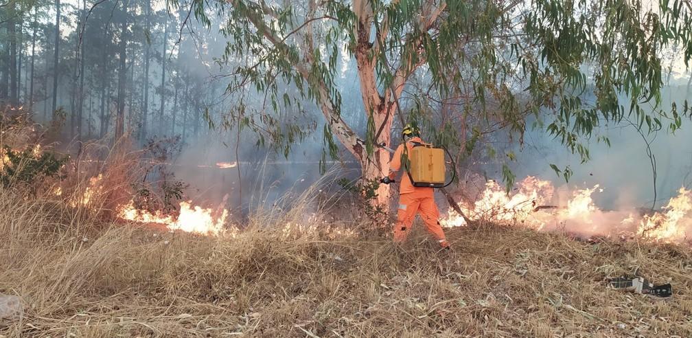 Incêndio registrado em Brasília de Minas — Foto: Corpo de Bombeiros