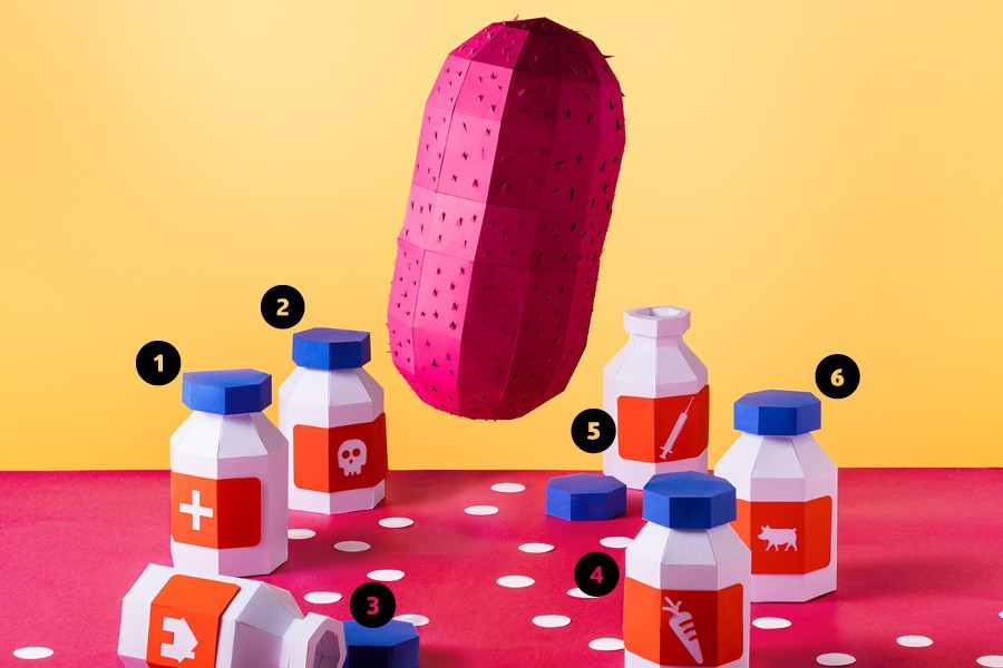 Dossiê - Superbactérias (Foto: Studio Oz / ilustração Mariana Coan)