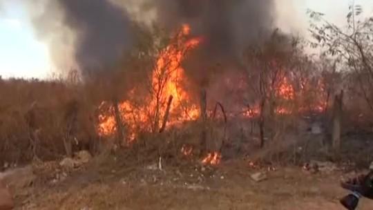 Piauí registra mais de 4 mil focos de calor e Ibama tenta combater incêndios florestais