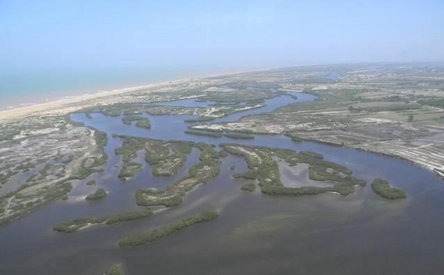 Projeto da Uenf vai proteger animais do  Parque Estadual da Lagoa do Açu  - Noticias