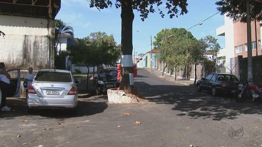 Moradores de Ribeirão Bonito fazem vigília e petição para evitar corte de árvore