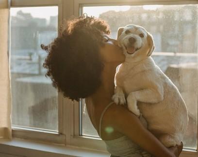 Petz anuncia folga remunerada para funcionários que adotarem animais