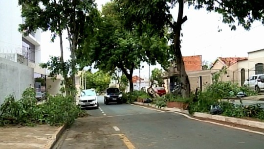 Após estragos causados por tempestade, reparos são feitos em várias regiões de Uberaba