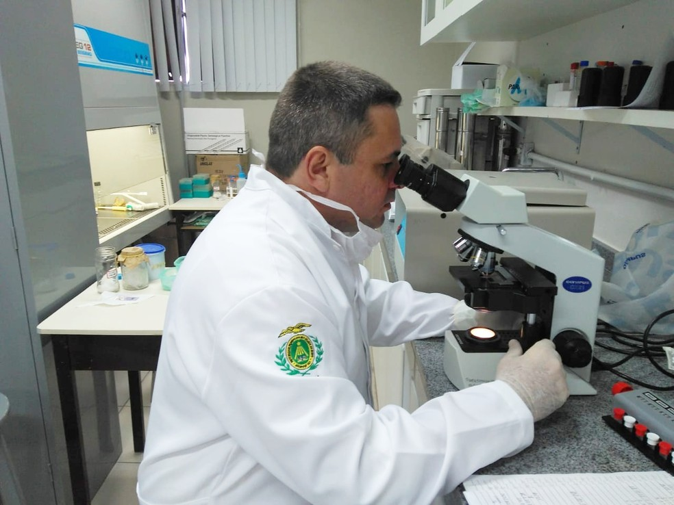 Estudo é do médico veterinário Vicente Toscano, que concluiu em 2018 mestrado pela Universidade Federal do Rio Grande do Norte (UFRN). — Foto: Marksuel Figueredo/Inter TV Cabugi