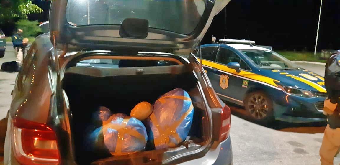 Três homens e uma mulher são detidos com drogas e arma, em São Caetano; 54,6 kg de maconha foram apreendidos
