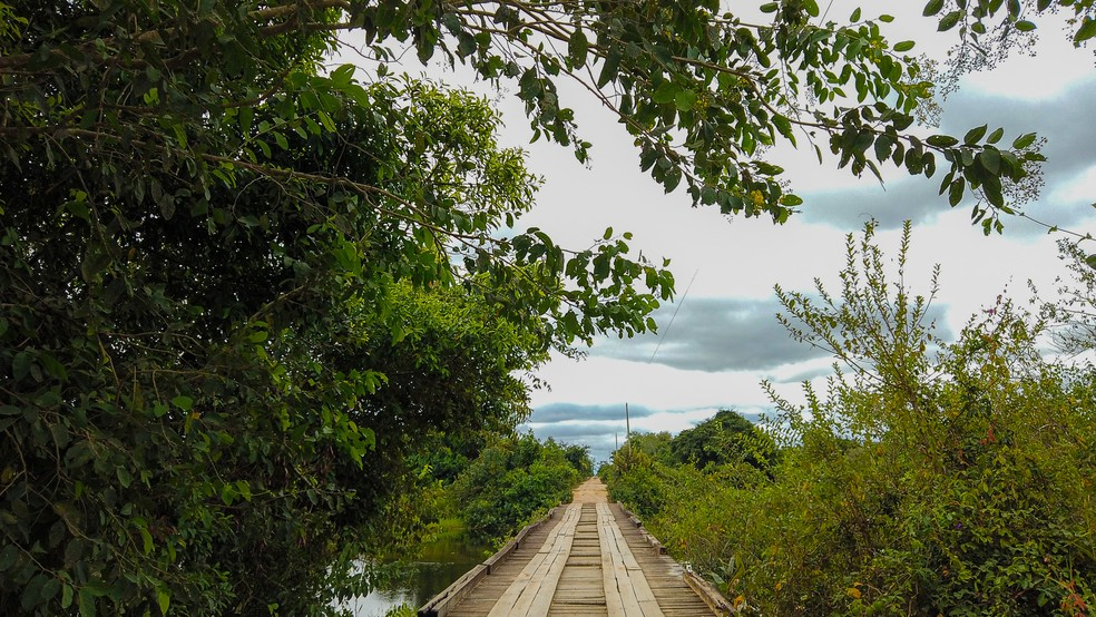 O Pantanal tem muitas áreas remotas, como Porto Jofre, localidade de Poconé (MT) que só pode ser acessada de avião ou pela Transpantaneira, estrada com mais de 100 pontes, muitas ainda feitas de madeira — Foto: Eduardo Palacio/G1