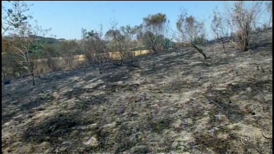 Incêndio de grandes proporções em mata mobiliza os bombeiros de Itapeva