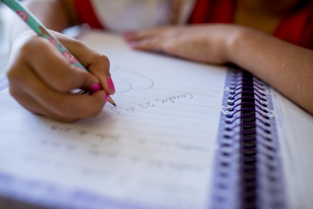 Atividades presenciais devem ser retomadas em escolas municipais de Terra Santa