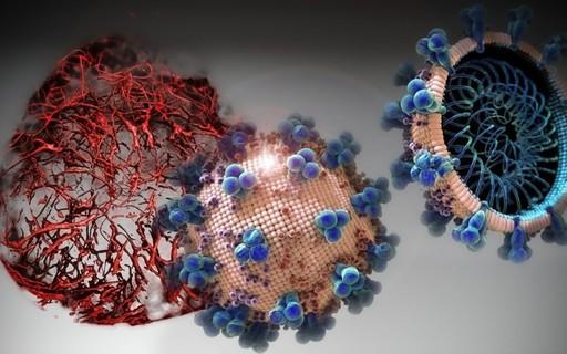 Cientistas testam remédio que impede Sars-CoV-2 de infectar célula humana