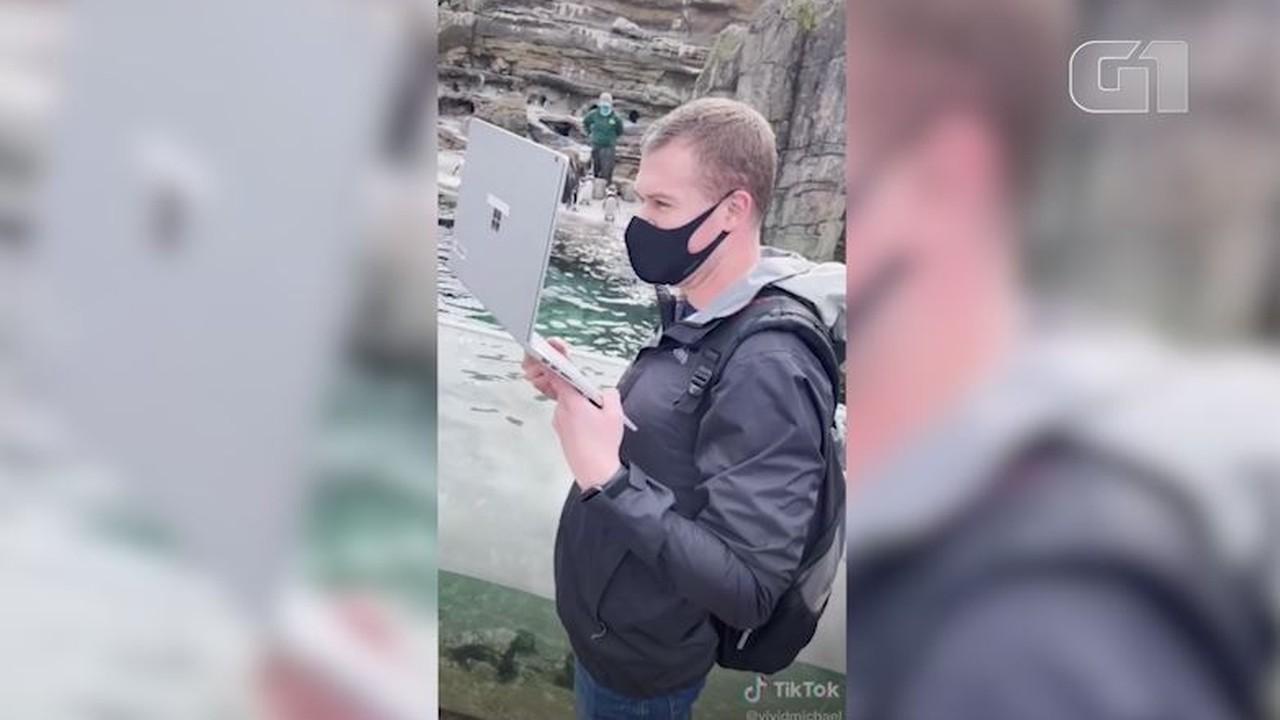 VÍDEO: professor de pré-escola nos EUA viraliza com vídeo de aula online no zoológico