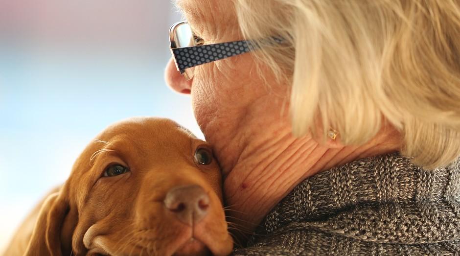 Idosa com cachorro (Foto: Pexels)