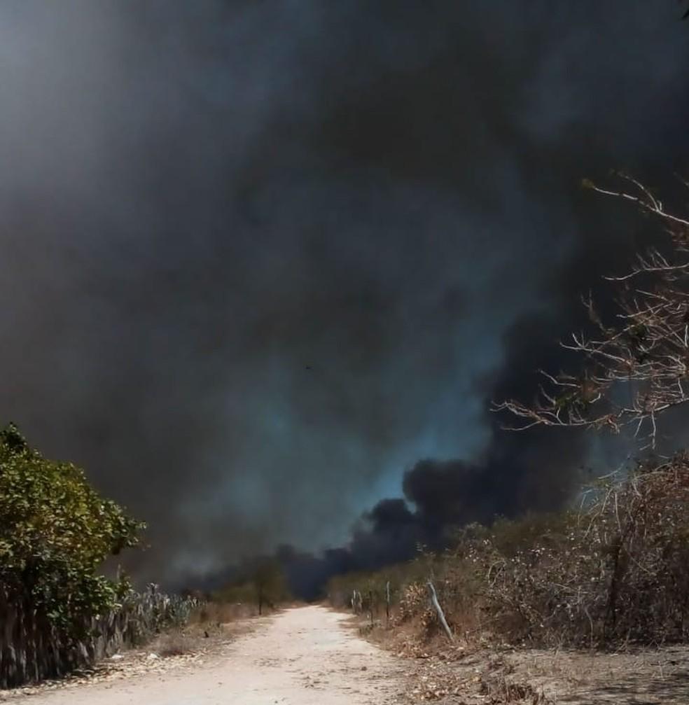 Incêndio no assentamento Santa Clara, em Canto do Buriti (PI) — Foto: Arquivo Pessoal/Ricardo Pereira