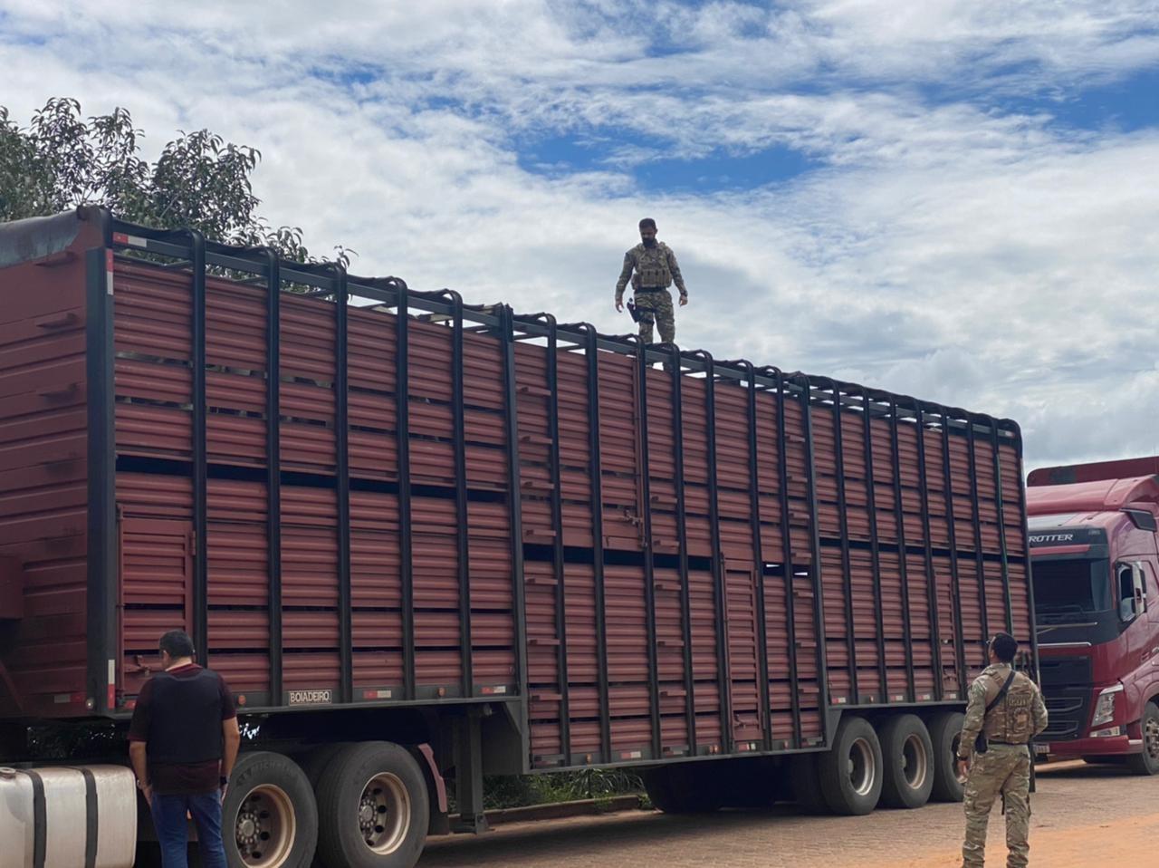 Polícia faz operação para combater o crime organizado na divisa do Tocantins com o Maranhão