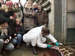 Zoológico realizou necropsia em girafa e visitantes puderam assistir (Fot Scanpix Denmark/ AFP)