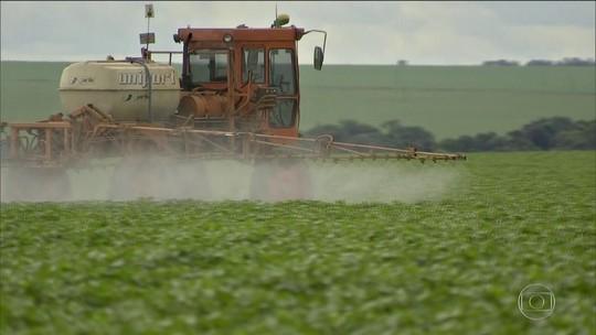 Governo libera 63 agrotóxicos; já são 325 registros neste ano