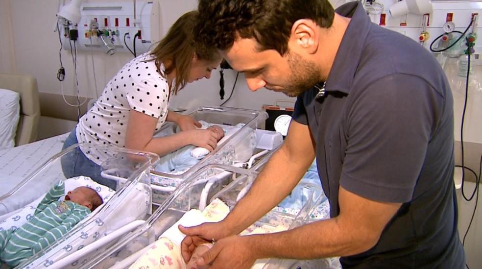 Pais de primeira viagem cuidam dos quadrigêmeos recém-nascidos no Hospital das Clínicas de Ribeirão Preto, SP — Foto: Luciano Tolentino/EPTV