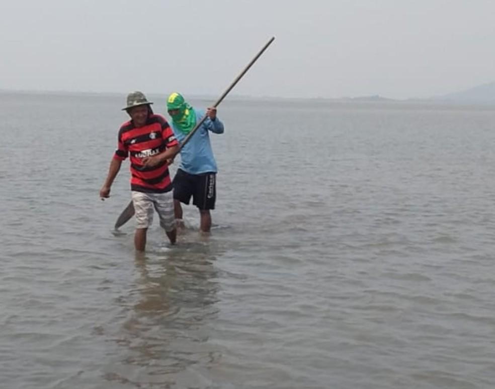 Com nível do rio Paraguai muito abaixo do normal, Guatós desciam de barco para andar no meio do leito buscando bancos de areia que pudessem  atrapalhar a navegação dos poucos barcos que ainda chegavam a aldeia — Foto: Oswaldo Correia da Costa/Arquivo Pessoal