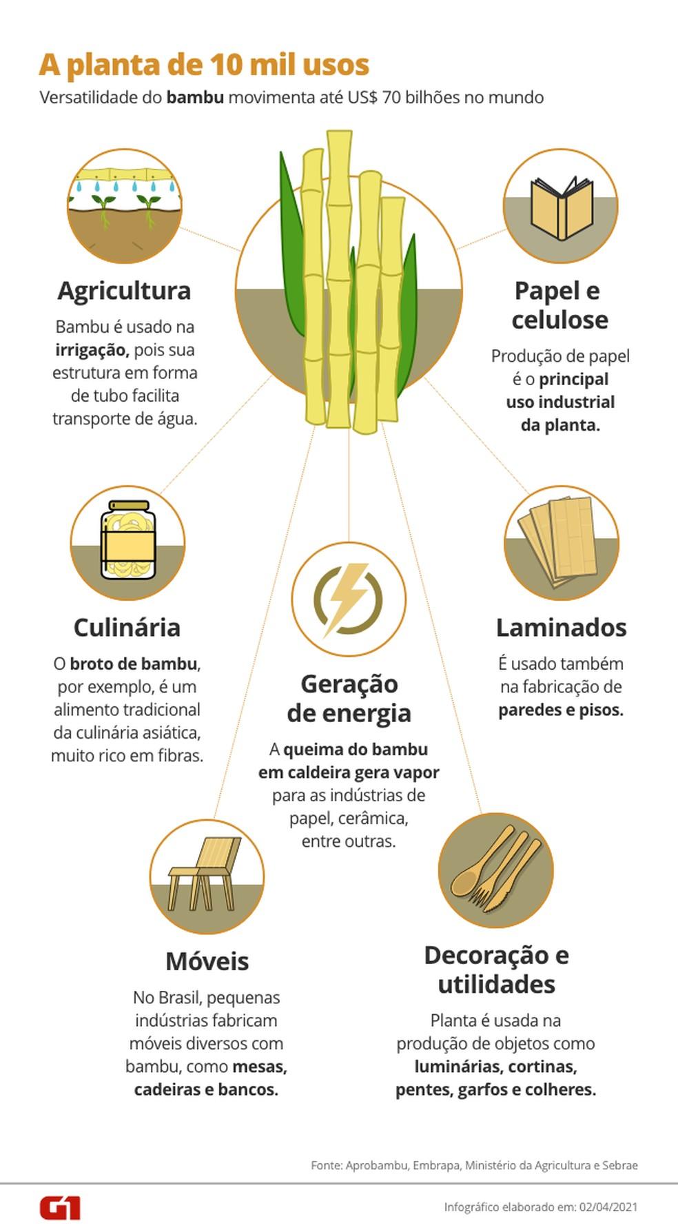Bambu pode ser usado de 10 mil maneiras diferentes. — Foto: Arte / G1.