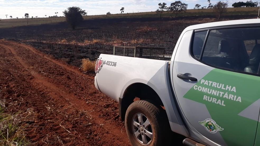 Polícia Ambiental constatou queimada sem autorização em uma plantação de mandioca — Foto: Polícia Ambiental